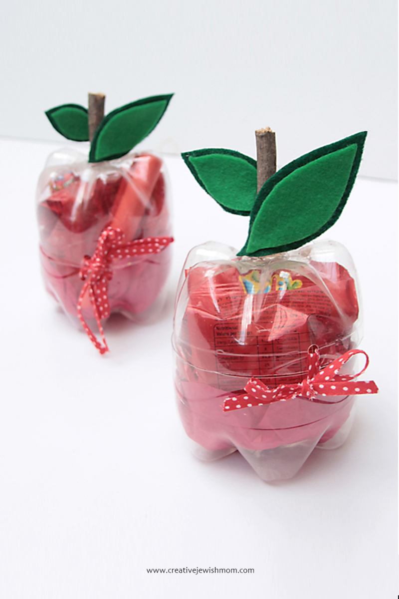 Plastic-bottle-apples-gift-box