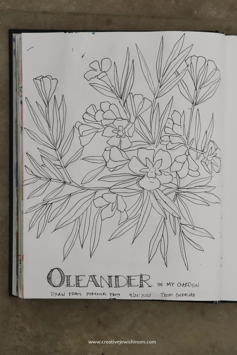 How-to-draw-oleander-simple