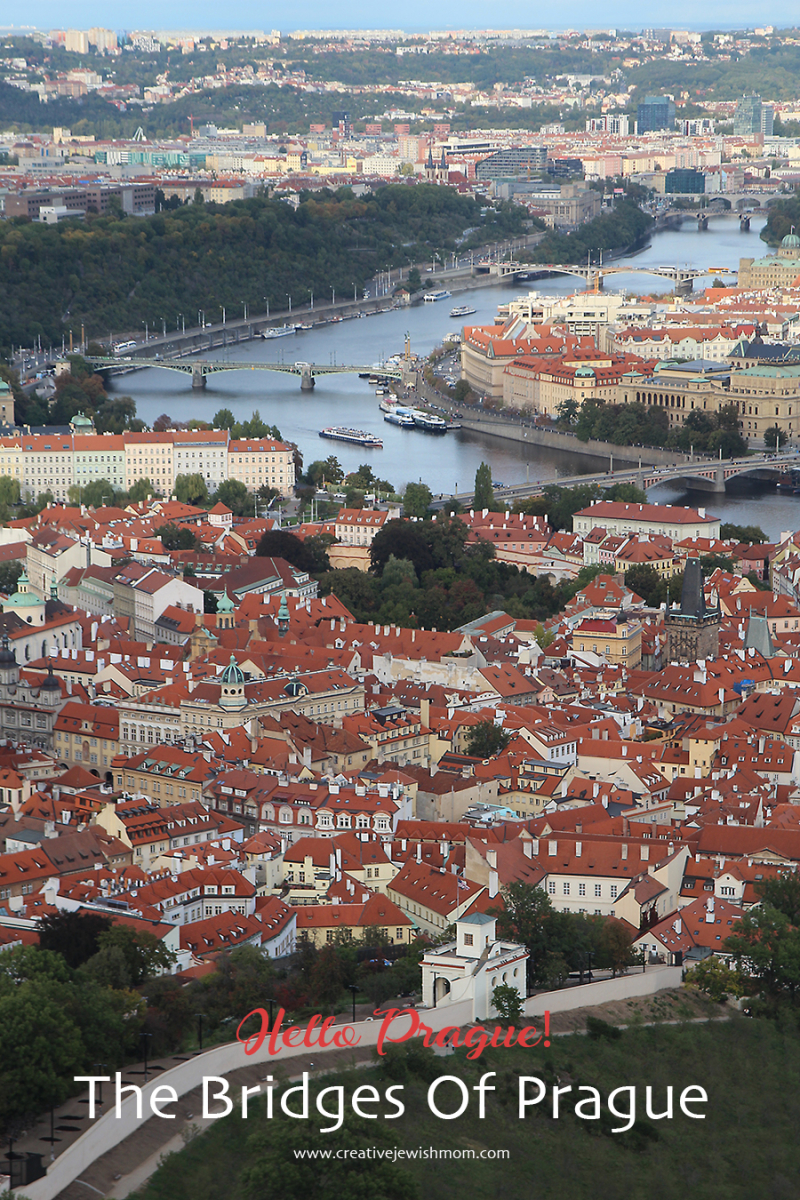 Prague-red-rooves-river-view