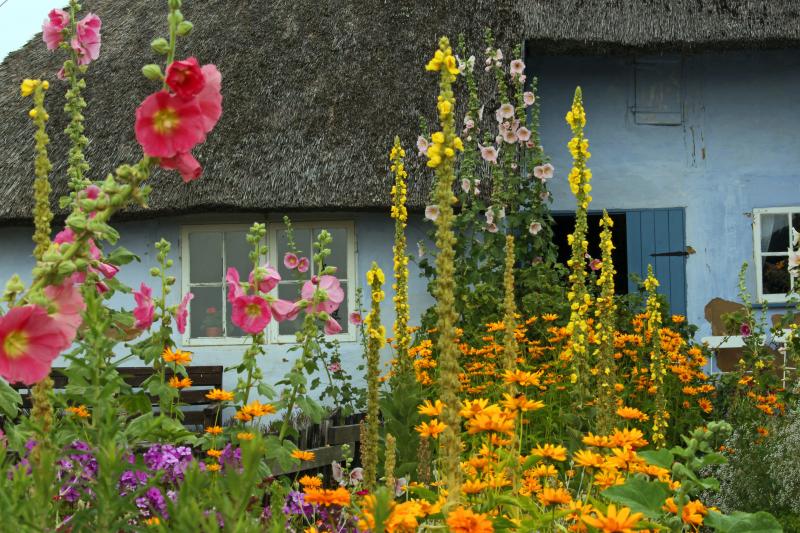 Old house farm garden