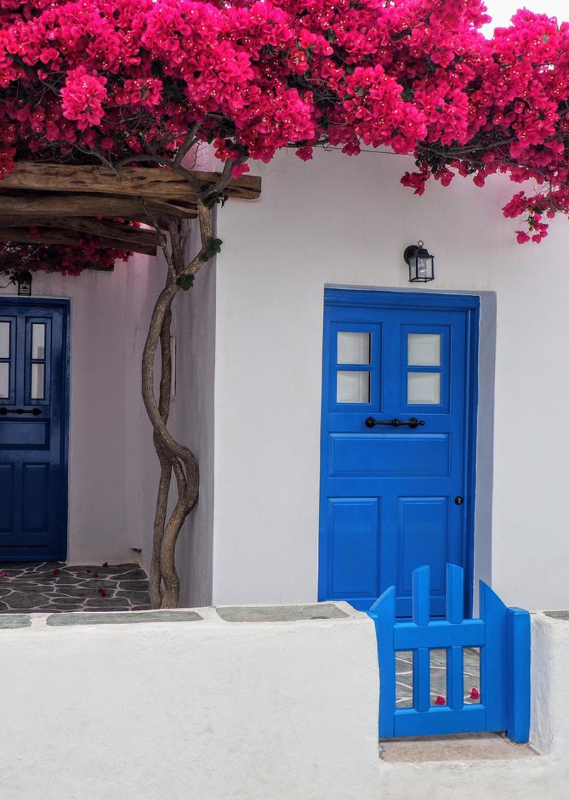 Home-bougainvillea-blue-door