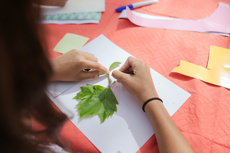 Creativity-leaf-collage