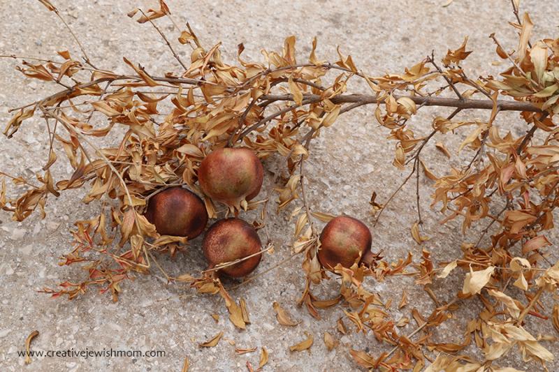 Succah-craft-nature-craft